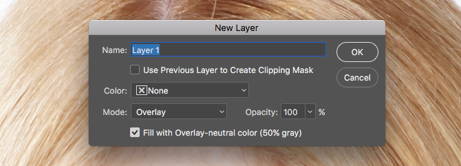 Learn Photo Editing in Photoshop: Get the Basics Down in 1 Hour new layer
