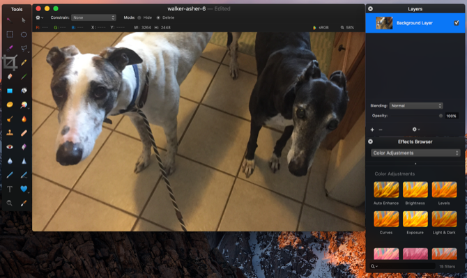 A Beginner's Guide To Digital Photography pixelmator mac