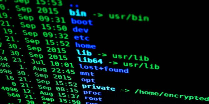 Looking for the Best Programming Languages? Start Here! programming language terminal utility
