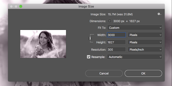 Learn Photo Editing in Photoshop: Get the Basics Down in 1 Hour resize