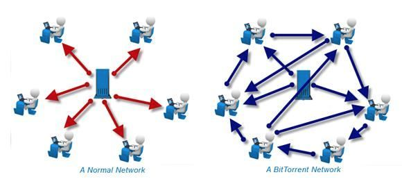 Torrent vs. Normal Network
