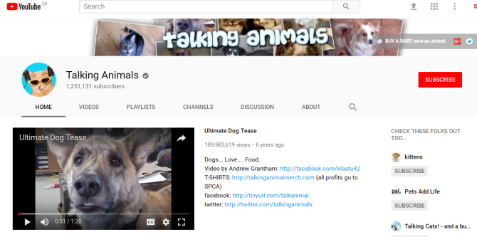 20 Fun Things to Do Online When You're Bored at Work talking animals youtube screenshot