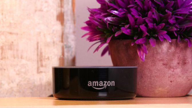 An Amazon Echo next to a flower pot