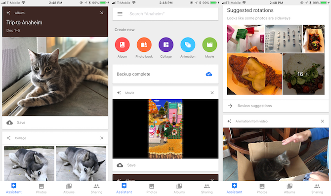 Google Photos assistant making albums and backups