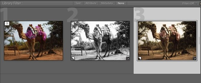 Lightroom -- Virtual Copies with Edits Applied