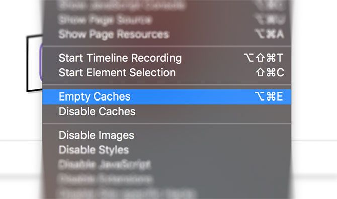 Safari Empty Cache