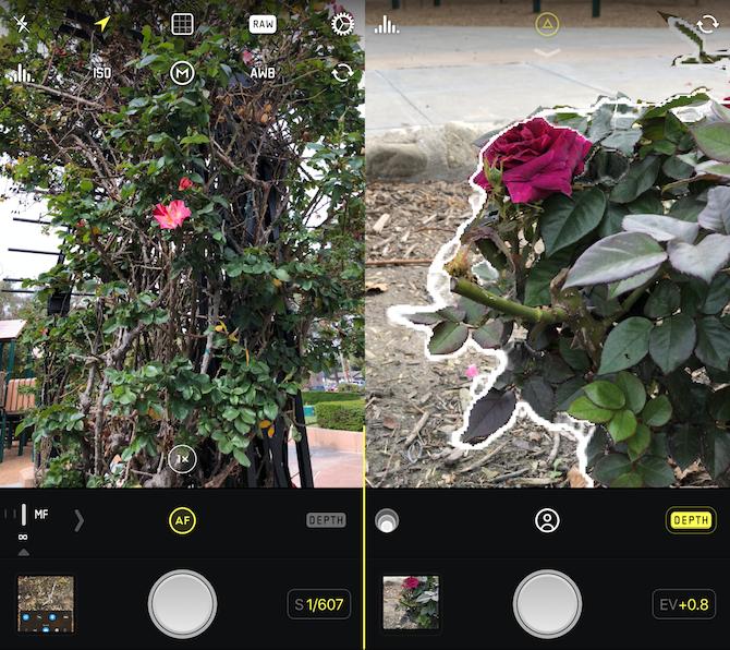 camera apps - halide