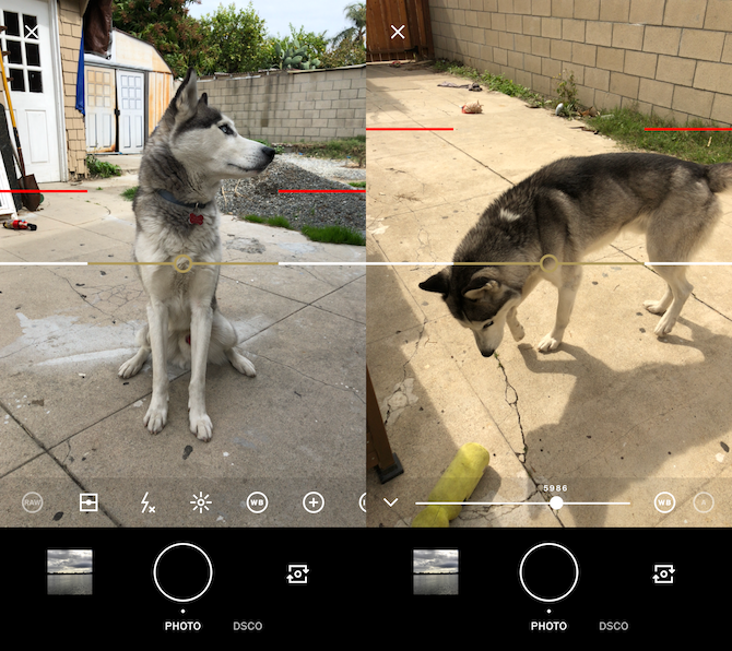 camera apps - vsco cam