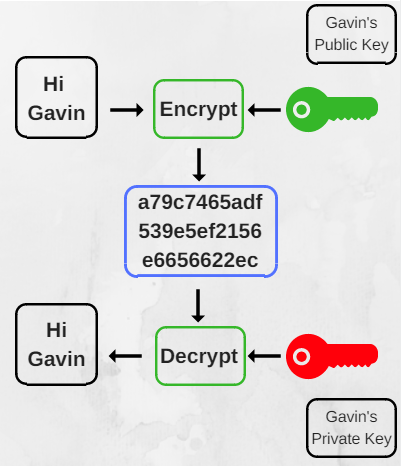 encryption terms - Public and Private Keys Explained