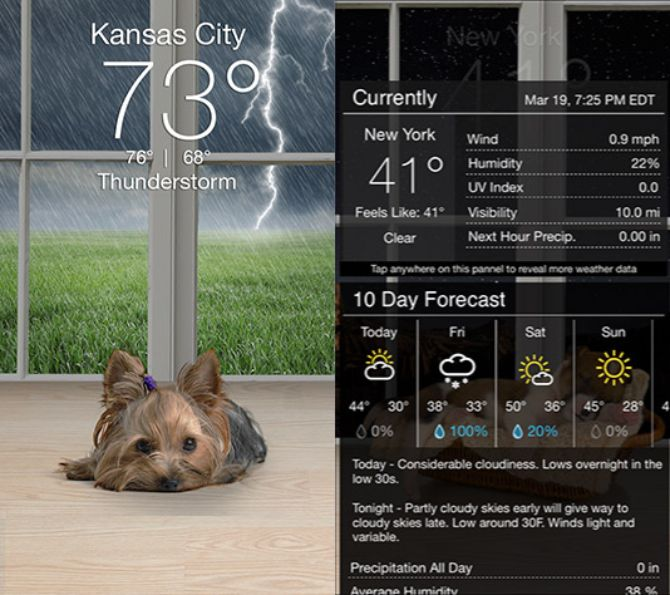 useful weather apps check every day