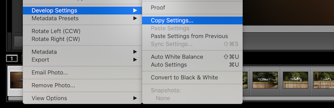 Copying settings for batch editing in Lightroom
