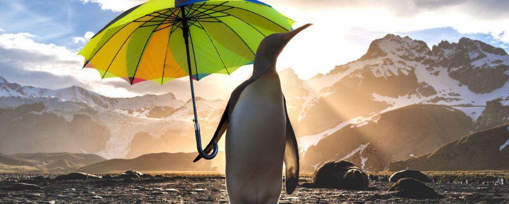 10 Möglichkeiten, das Wetter von Ihrem Linux-Desktop