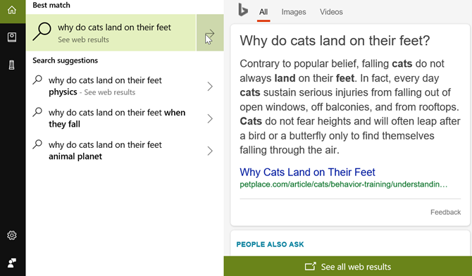 Cortana Cat Question Desktop