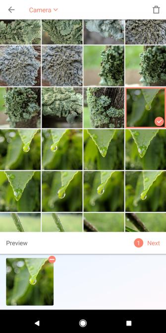 Wie man Grenzen zu Fotos hinzufügt: 9 einfache Methoden, die jedermann