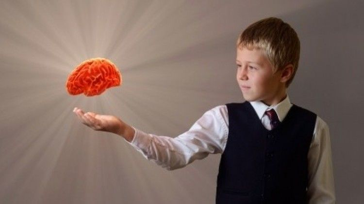 Neuroscience for Parents