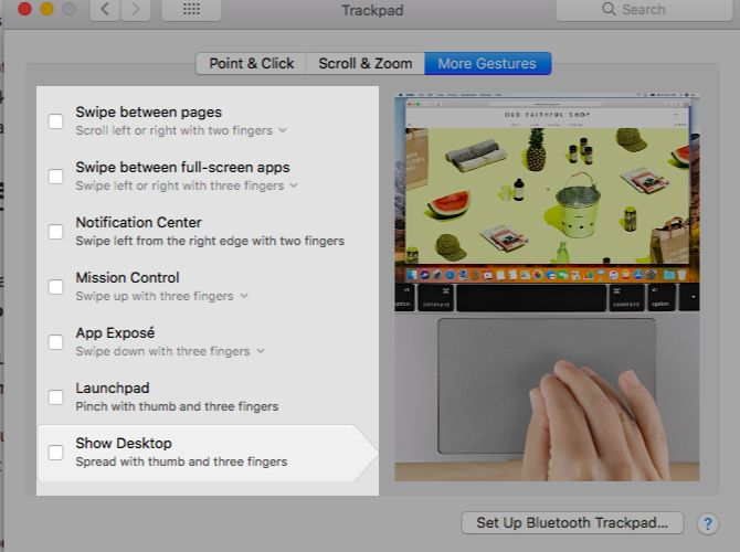 disable-multitouch-gestures Mac