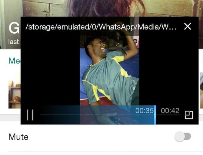 The Best New WhatsApp Features You Might Have Missed whatsapp video popout zoom