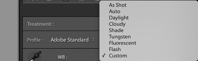 Lightroom white balance settings