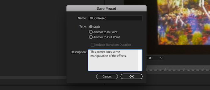 Premiere Pro preset naming
