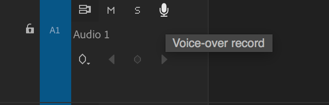 Premiere Pro voice over record button