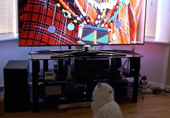 Forget Philips Ambilight: iHoment Retrofit TV Backlight Does The Job For $60 iHoment cat