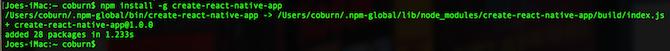 Installing npm Create App