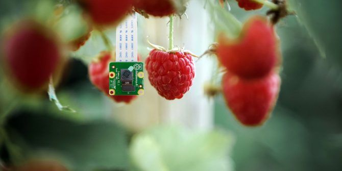 How to Set Up a Raspberry Pi Camera Module