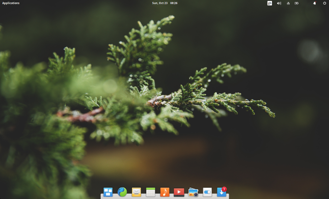 A stunning Linux desktop and dock.