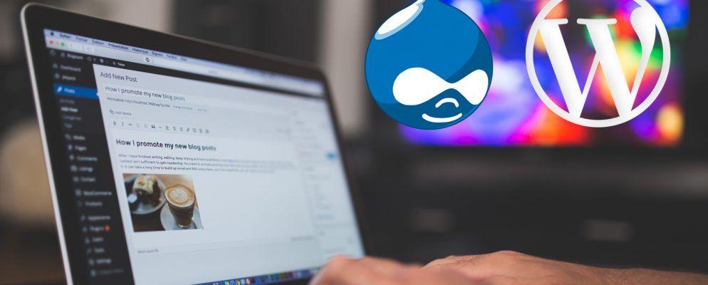 Drupal vs WordPress: Was ist das beste Open-Source-CMS?