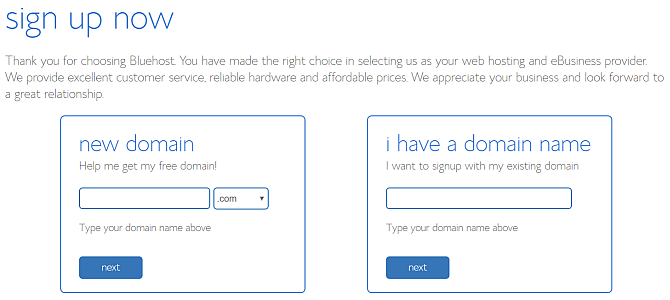 choose bluehost domain name