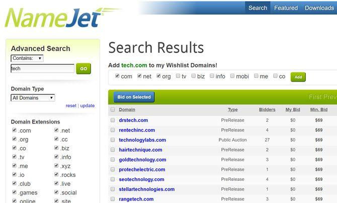 namejet domain auctions