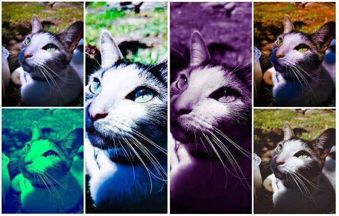 6 Gründe für die Verwendung von Fotobearbeitungs-Apps über Instagram-Filter