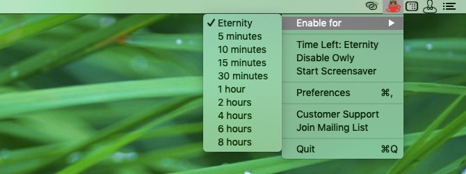 duration-presets-menu-in-owly-on-mac