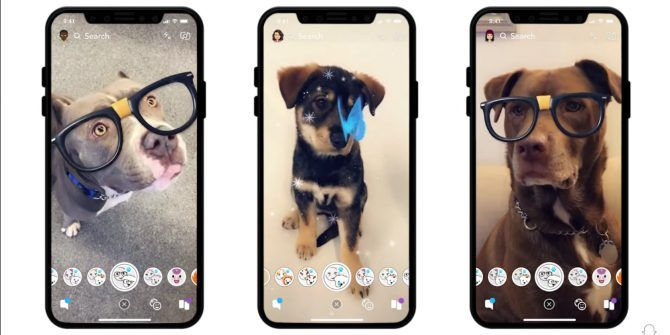 Snapchat Launches Lenses for Dogs