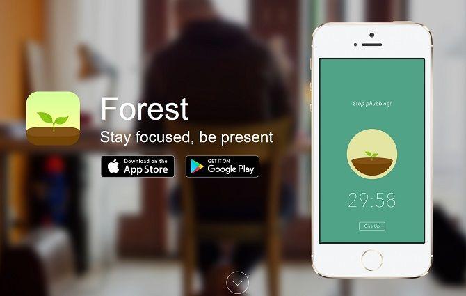 Ảnh chụp màn hình trang web ứng dụng Forest
