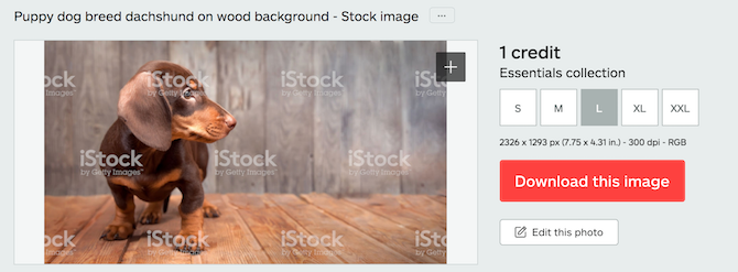 iStock Provides All the Stock Images and Videos You Need at