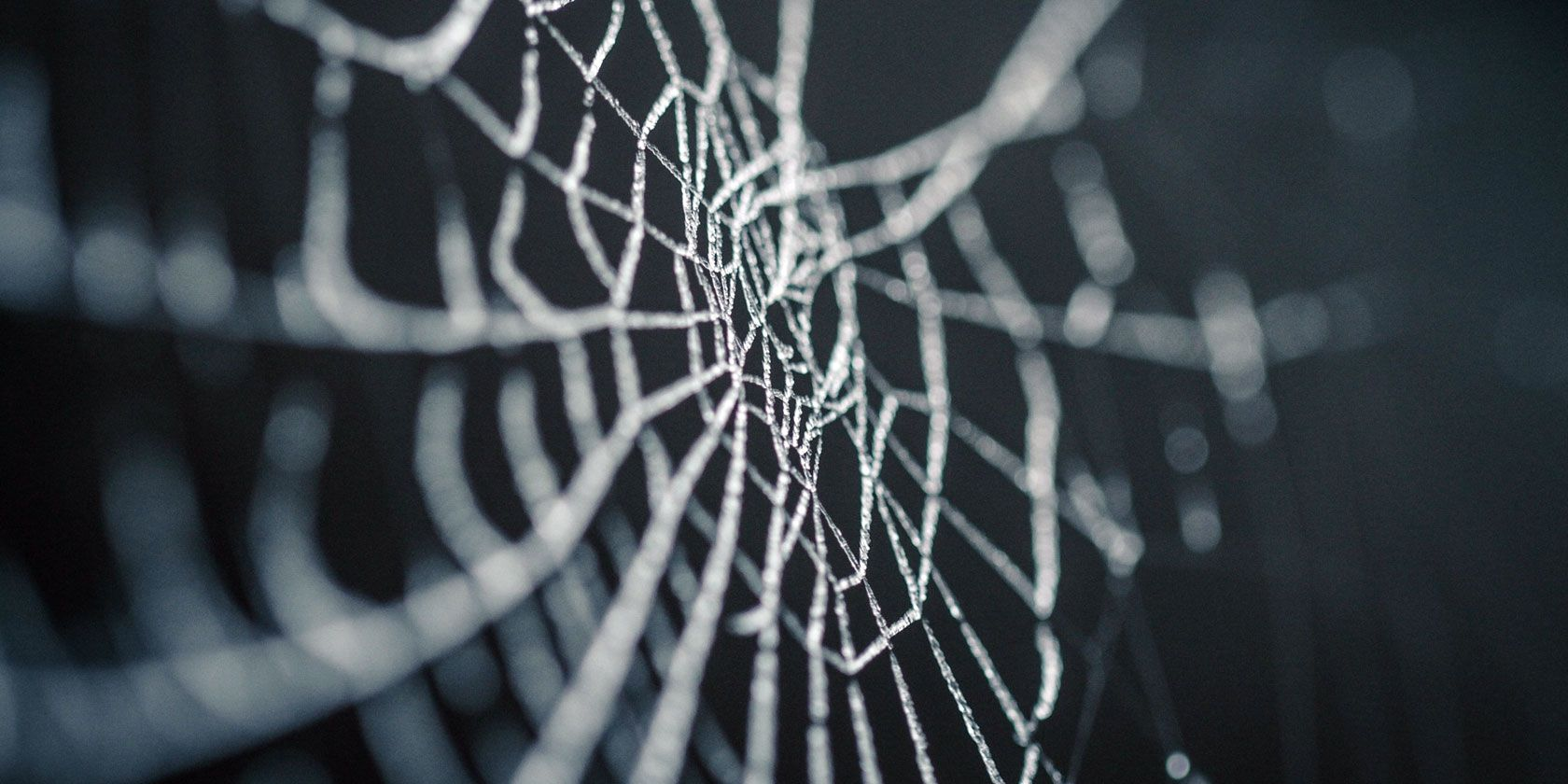 The Best Dark Web Websites You Won't Find on Google