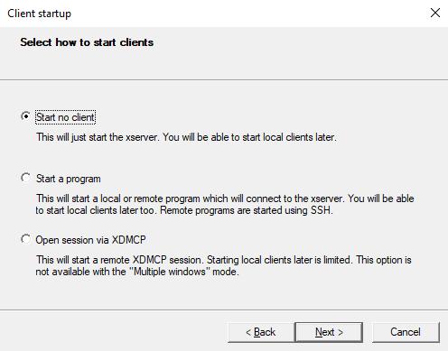 Configure an X server in Windows