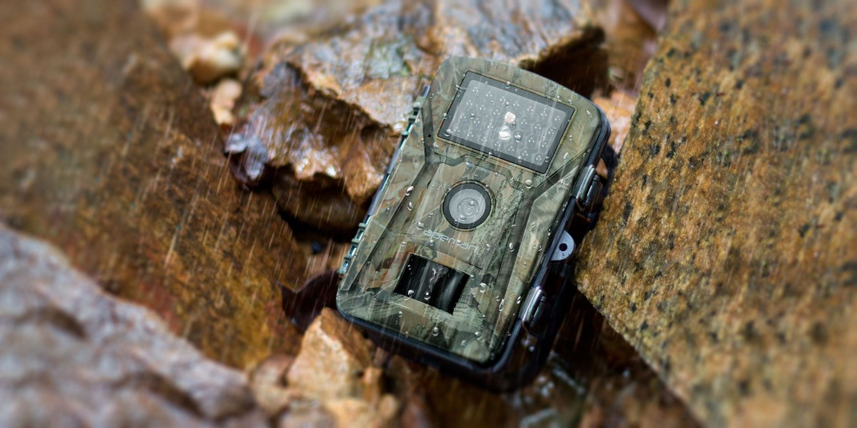The 5 Best Trail Cameras for All Budgets