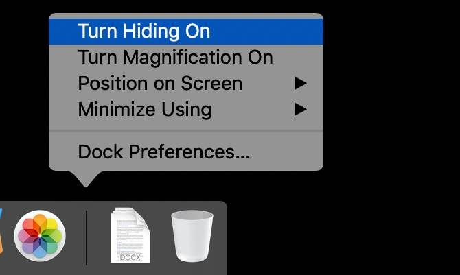 Enabling hiding the macOS Dock