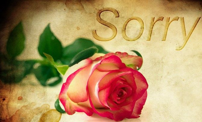 Sorry Rose