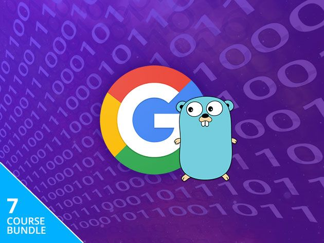 Learn the Language of Android With This Google Go Developer Training
