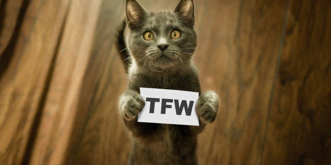 What Does TFW Mean? The TFW Acronym Explained