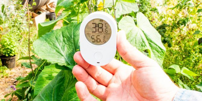 No More Dead Plants, with The Govee Wi-Fi Temperature and Humidity Monitor