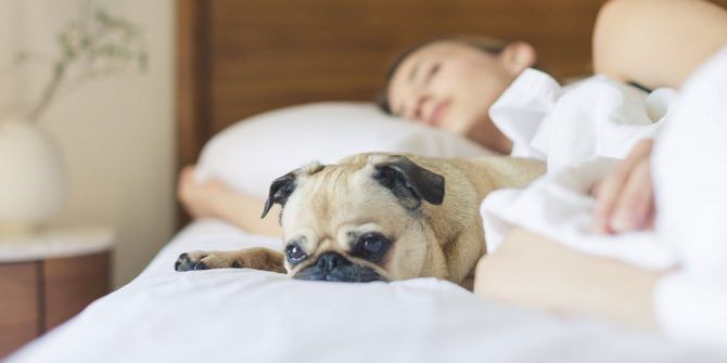 5 Best Sleep Apps & Methods to Fall Asleep Faster Without Interruptions