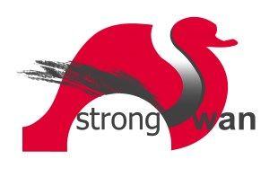 5 лучших VPN с открытым исходным кодом для Linux и Windows Open Source VPN strongSwan
