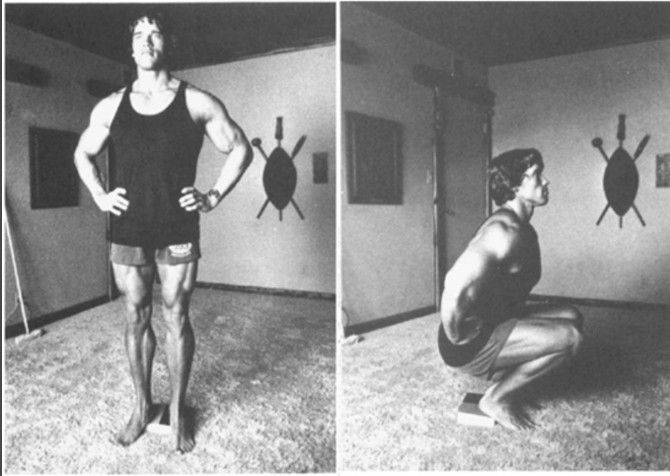 Arnold Schwarzenegger shared a free workout routine to do inside your home