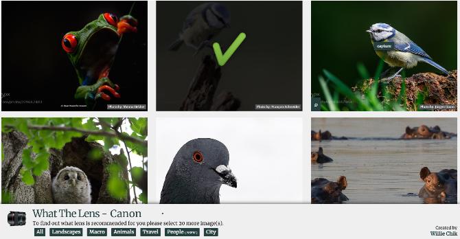 What The Lens рекомендует линзы на основе понравившихся вам фотографий из большого ассортимента