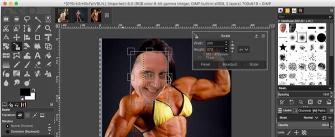 GIMP Scale Tool