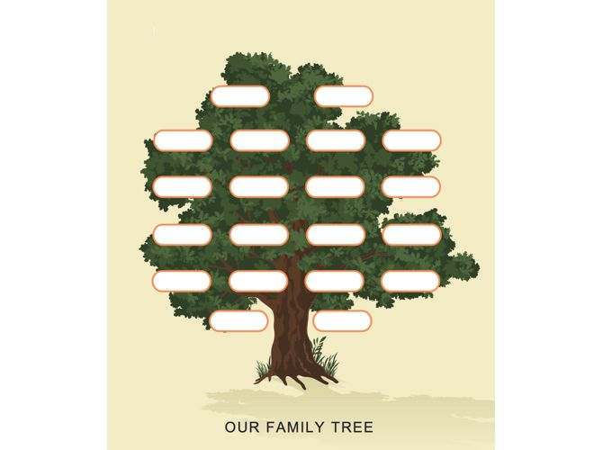 Family Tree Template Tree-TemplateLab